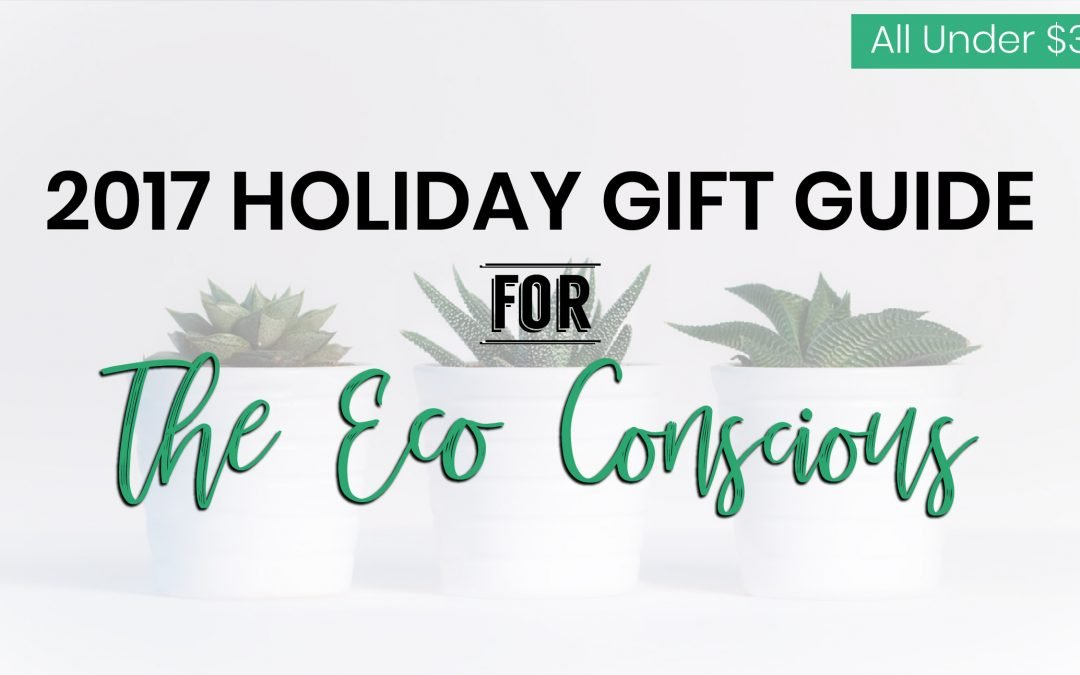 2017 Holiday Gift Guide: The Eco Conscious